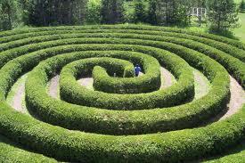 maze like