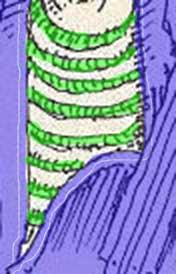 36--stripes